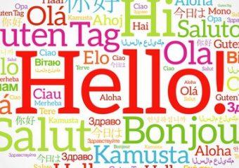 Wat als er maar een taal is?